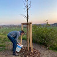 lia-baumpflanzung-100-todestag-max-klinger_foto-firma-kittel-7